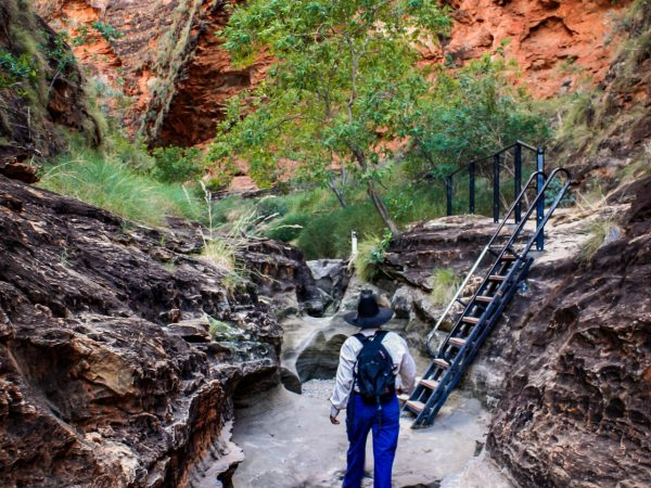 Kimberley Walking Tours - Bungle Bungle Guided Tours Australia