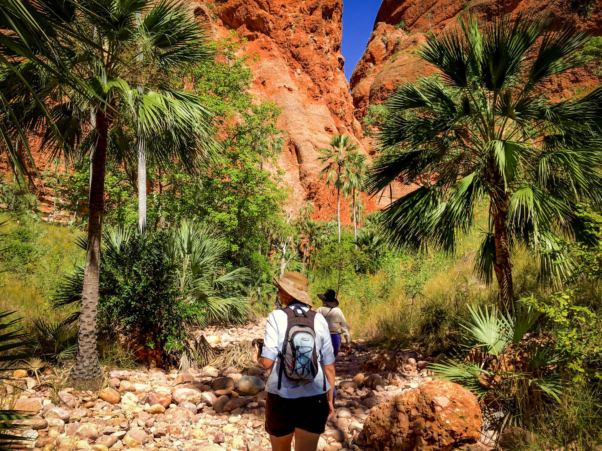 Cathedral Gorge and Domes Guided Walking tours