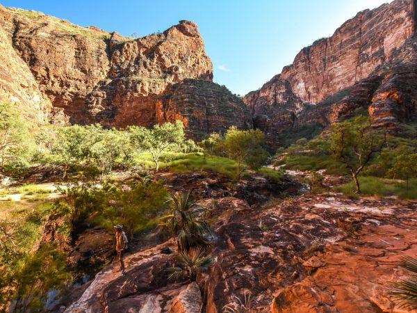 Picaninny Gorge hike WA