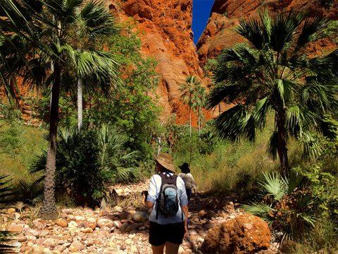 Echidna-Chasm-walking-tours-BBGT